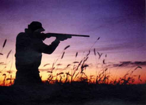 Roccastrada: cacciatore stroncato da un malore
