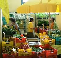 Anche Scarlino avrà il mercatino contadino della filiera corta