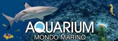 Valpiana: sabato sarà inaugurato l'impianto fotovoltaico dell'Aquarium Mondo Marino