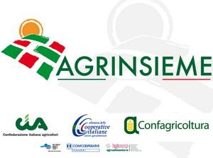 Venerdì 15 febbraio Agrinsieme incontrerà il mondo della politica