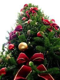 """Dal 6 dicembre è """"Natale a Grosseto"""" con i mercatini di Natale e non solo"""