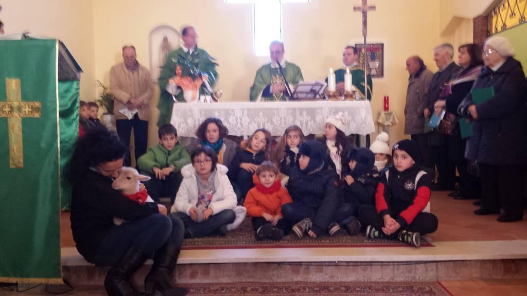 Festa di Dio nel creato: cani, gatti, cavalli, un agnellino e due vitelli benedetti dal vescovo Rodolfo