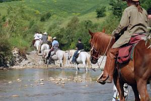 Maremma Cavallo