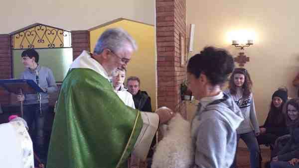 Photo of La Maremma celebra Sant'Antonio abate: ecco gli appuntamenti per la benedizione degli animali