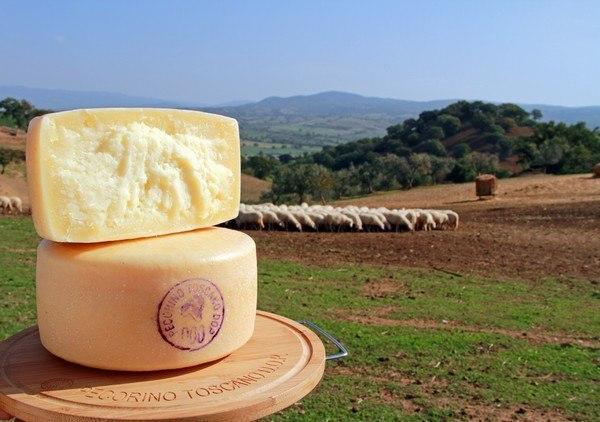 Il Pecorino Toscano Dop si svela ai food blogger con il tour #pecorinotoscanolive