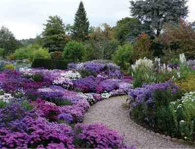 Il giardino delle esperidi montemerano ospita la mostra for Giardino fiori