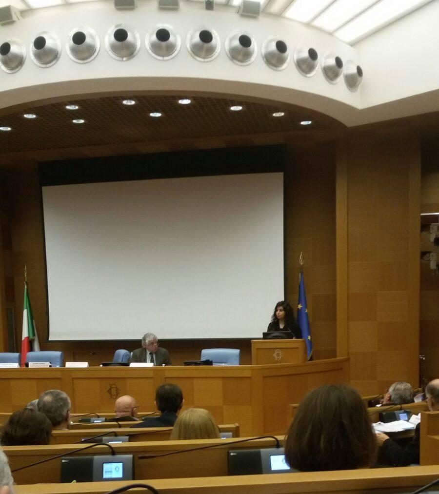 Romina sani alla camera dei deputati al convegno no alla for In diretta dalla camera dei deputati