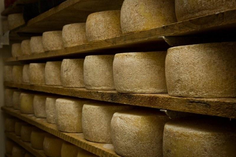 """Slow Food cresce: approvato il progetto """"Pecorino"""""""