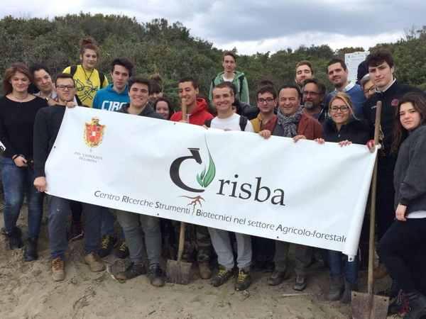 Photo of Castiglione della Pescaia: giglio di mare sulle dune per proteggere le spiagge