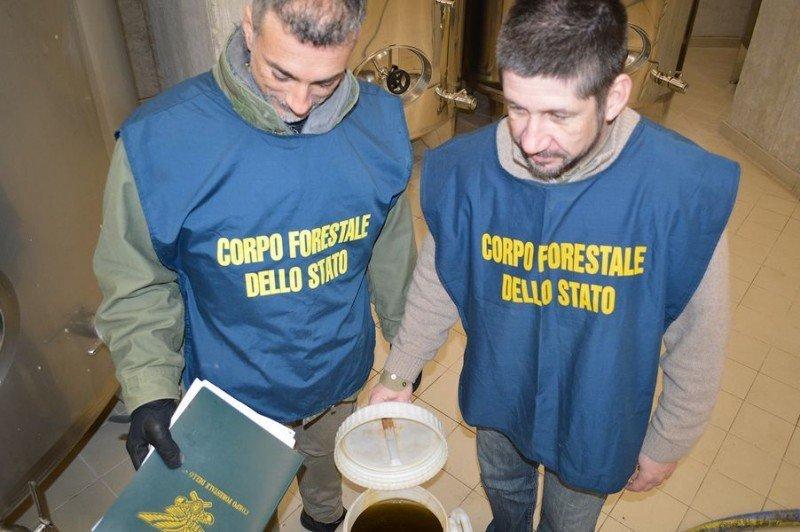 Vendevano olio pugliese e greco come toscano: sequestri e perquisizioni anche a Grosseto