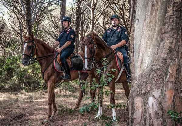 Sicurezza, i carabinieri pattugliano le pinete di Marina, Castiglione e Scarlino