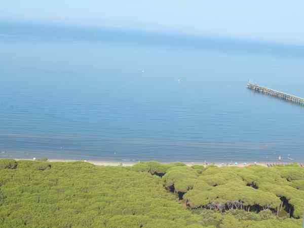 """Schiuma bianca sul litorale, il Comune: """"Attivati immediatamente i controlli"""""""