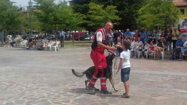 Proseguono le attività del gruppo cinofilo della Croce Rossa