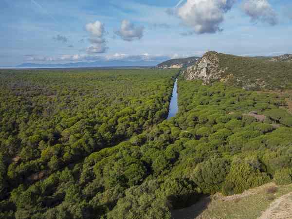 Photo of Parco della Maremma: eccezionale flusso turistico anche al tempo del Covid