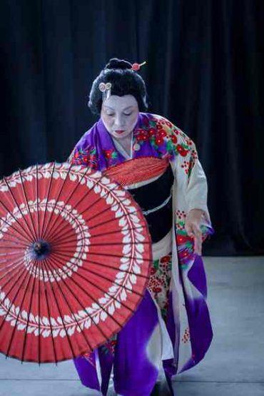 Danza, aikido e una mostra di bonsai: Grosseto celebra la cultura del Giappone