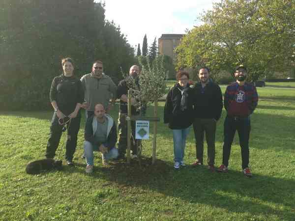 Photo of Festa dell'albero: La Deceris pianta una sughera in una rotonda cittadina