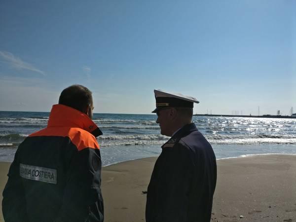 Trovato morto un delfino sulla spiaggia di Capalbio