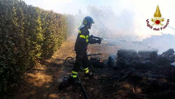 Photo of Incendio in un oliveto: le fiamme minacciano il bosco