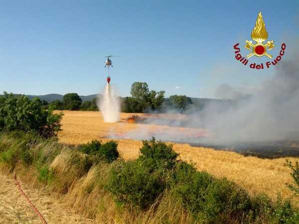 Boschi in fiamme in Maremma, nel Pratese e in Lucchesia Cronaca