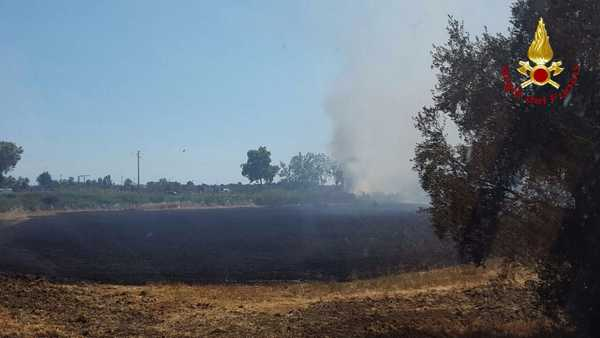 Photo of Incendio all'Oliveto: le fiamme minacciano le case