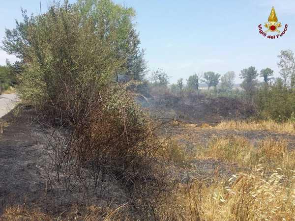 Nuovi incendi a Grosseto: fiamme in varie zone del territorio comunale – FOTO