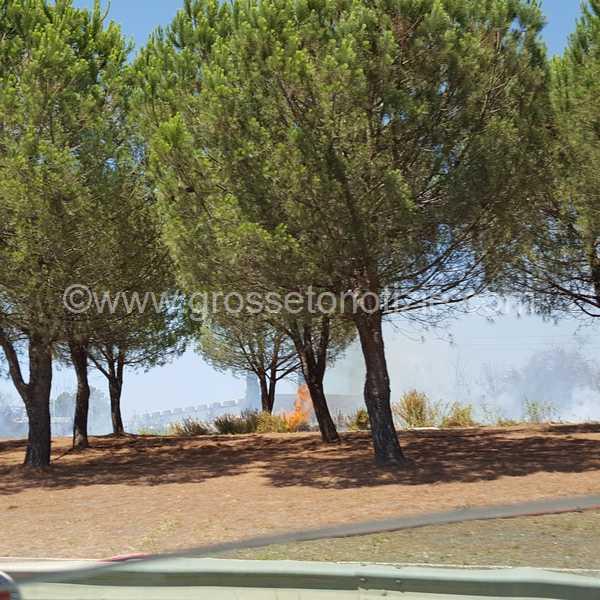 Incendio alle porte della città: fiamme a Grosseto nord – FOTO