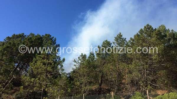 """Photo of Emergenza incendi, Fare Grosseto: """"Impiegare i droni per difendere le pinete"""""""