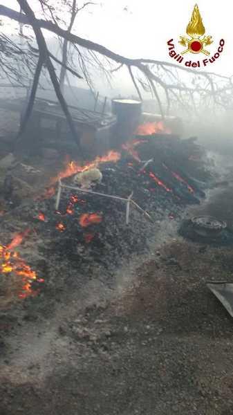 Incendio in una baracca: pericolo per bombole di gpl all'interno