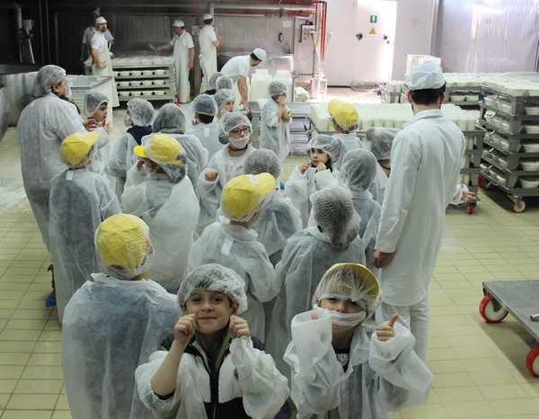 """""""A scuola con la Dop"""": torna il progetto sulla sana alimentazione dedicato agli studenti"""