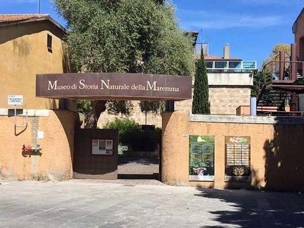 """Photo of Clorofilla Film Festival: """"La voce del mare"""" al Museo di storia naturale"""