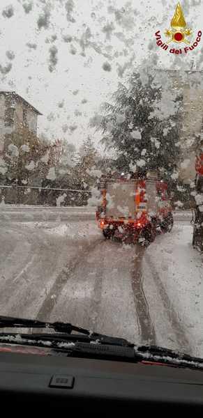 Disagi sull'Amiata per neve e maltempo: incidenti e alberi pericolanti