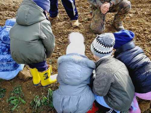 """""""Dal grano al pane"""": è iniziato il viaggio dei bambini dell'asilo alla scoperta della natura"""