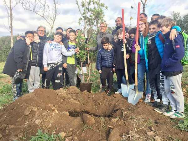 Festa dell'albero: gli studenti ripiantano alberi nella zona devastata dall'incendio