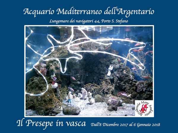 Torna il Presepe in vasca all'Acquario Mediterraneo: sarà inaugurato l'8 dicembre
