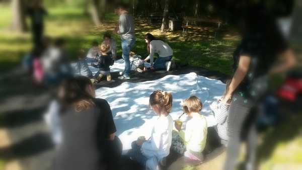 Educazione all'aperto, nuovo seminario gratuito: giochi con gli asinelli per i bambini