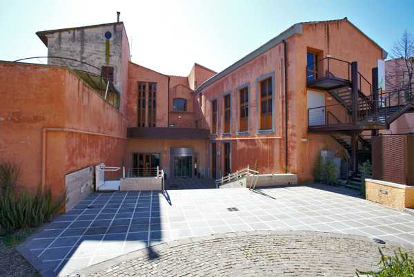 Darwin Day: conferenze e laboratori al Museo di Modena