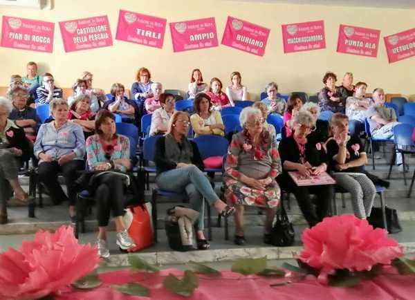 """Prima assemblea per Insieme in rosa: """"Sempre più impegnati per favorire la ricerca contro i tumori"""""""