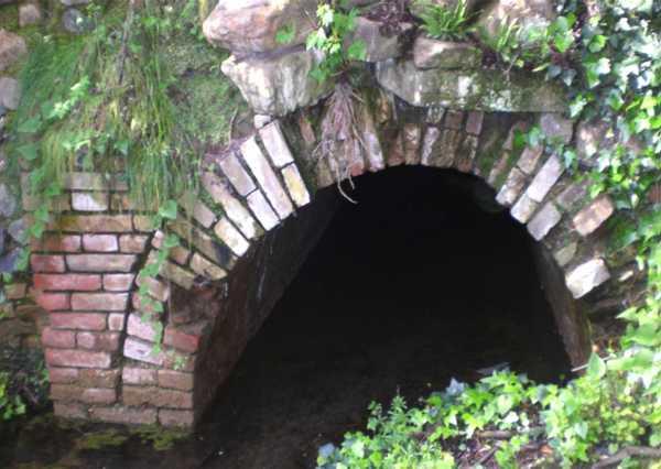 Sulle tracce dell'Ominide: visita guidata all'imbocco della galleria della miniera di Baccinello
