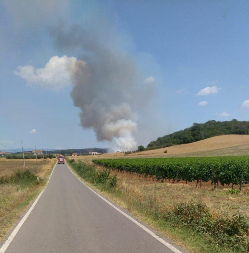 Incendio in un campo di grano, fiamme partite da un trattore: Vigili del Fuoco sul posto