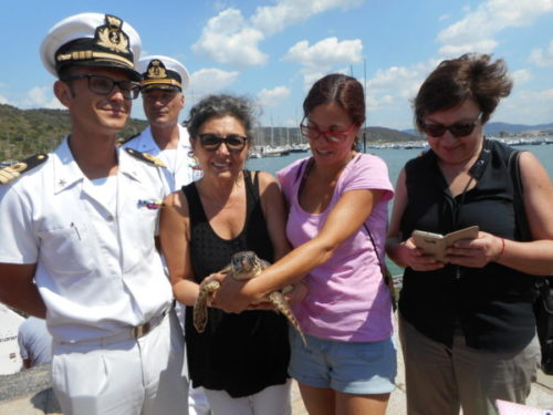 Photo of T. Fortuna torna a nuotate nel suo mare: liberata una tartaruga marina
