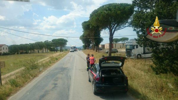 Photo of Cavo pericoloso sulla strada: traffico bloccato, Vigili del Fuoco al lavoro