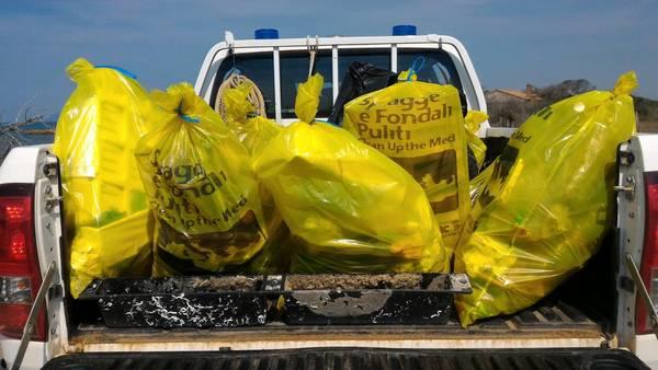 Pulita la spiaggia di Principina: raccolti 18 sacchi di rifiuti