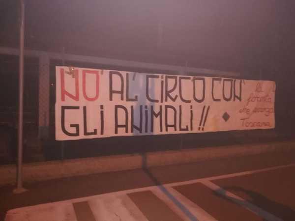 """Photo of """"No al circo con gli animali"""": striscione di protesta de La foresta che avanza"""