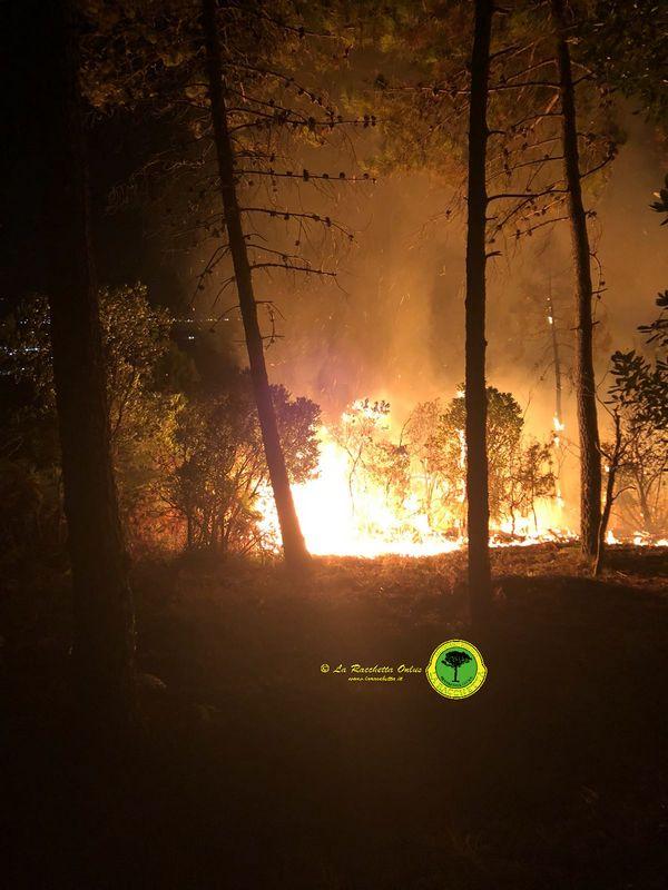 Incendio boschivo a Casal di Pari, proseguono le operazioni di bonifica