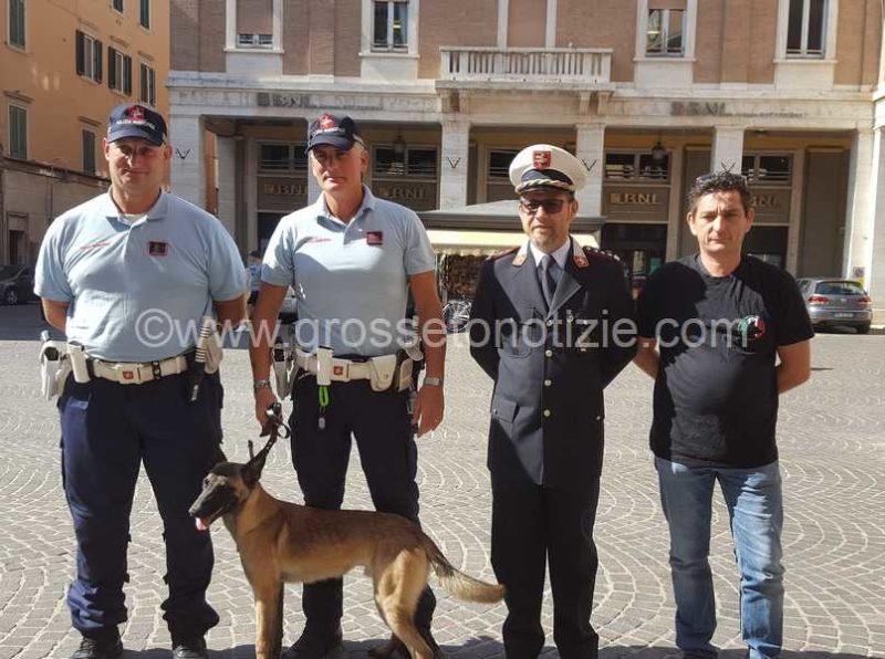 Doppia operazione dei cani antidroga: Van Basten e Destroy trovano stupefacenti sulle Mura