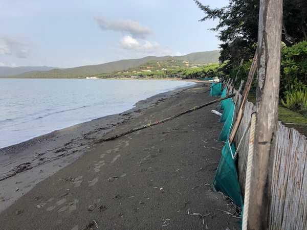 """Maltempo, il Comune fa la conta dei danni: """"Attività ed edifici rovinati, spiagge a rischio erosione"""""""