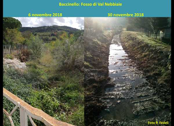 """Photo of Baccinello, il Consorzio ripulisce il fosso di Val Nebbiaie: """"Ascoltate le proteste dei residenti"""""""
