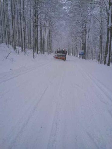 Emergenza neve e ghiaccio: ecco gli aggiornamenti