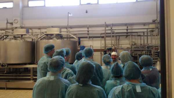 Come si fa un formaggio: gli studenti dell'Alberghiero in vista al caseificio Il Fiorino