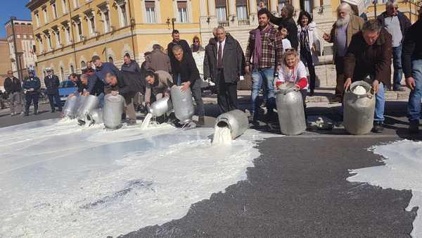 """Crisi del latte, il sindaco: """"Fenomeno strutturale, serve coraggio della politica per risolvere problema"""""""
